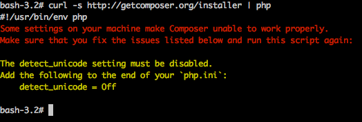Composer installation error